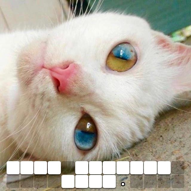 Such amazing eyes.