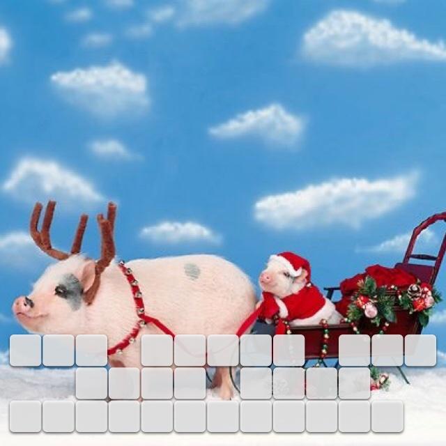 I'm going hog wild this Christmas.🐷🐽